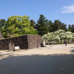 松江城 散歩 広場 子供