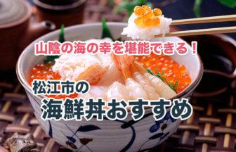 松江市の海鮮丼がおすすめなお店