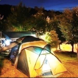 森林公園 キャンプ