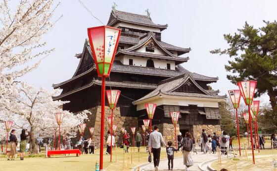 松江城 桜 花見 お城まつり
