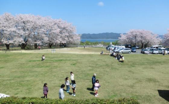 大塚山 松江 桜 名所
