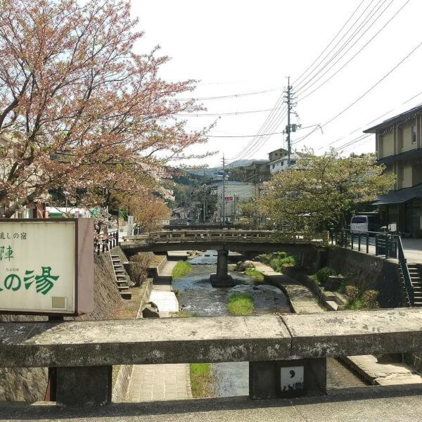 玉造温泉 桜 名所 花見